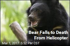 Bear Falls to Death From Helicopter