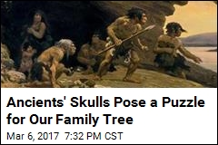 Ancients Skulls Pose a Puzzle for Our Family Tree