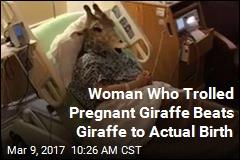 Woman Who Trolled Pregnant Giraffe Beats Giraffe to Actual Birth