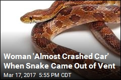 Woman 'Almost Crashed Car' When Snake Came Out of Vent