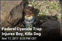 Federal Cyanide Trap Injures Boy, Kills Dog