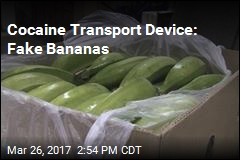 Cocaine Transport Device: Fake Bananas