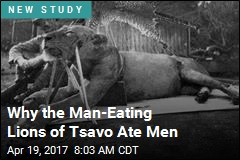 Why the Man-Eating Lions of Tsavo Ate Men