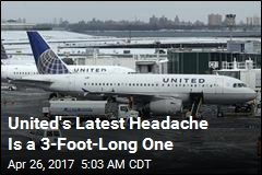 United's Latest Headache Is a 3-Foot-Long One