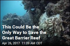 To Save the Great Barrier Reef, Scientists Look Skyward