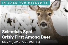 Scientists Spot Grisly First Among Deer