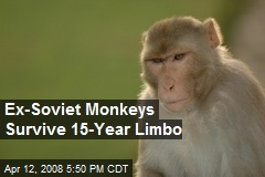 Ex-Soviet Monkeys Survive 15-Year Limbo