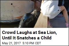 Crowd Laughs at Sea Lion, Until It Snatches a Child