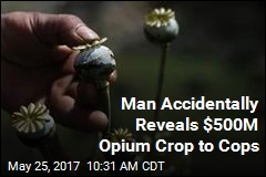 Man Accidentally Reveals $500M Opium Crop to Cops