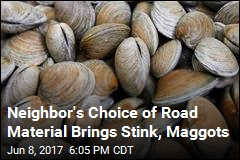Neighbor's Choice of Road Material Brings Stink, Maggots