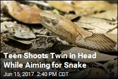 14-Year-Old in Texas Shot to Death by Twin Aiming for Snake