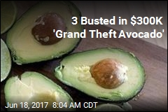 3 Busted in $300K 'Grand Theft Avocado'