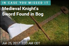 Sword Found in Bog May Tell of Knight's Demise