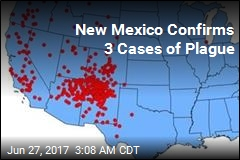 3 Plague Cases Found in New Mexico County