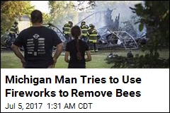 Guy Tries to Remove Bees With Fireworks, Burns Down Garage