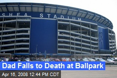 Dad Falls to Death at Ballpark