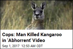 Man Arrested for 'Abhorrent' Kangaroo Killing