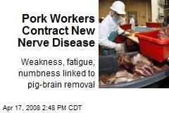 Pork Workers Contract New Nerve Disease