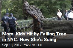 Mom Hit by Falling Tree in Central Park Sues for $200M