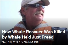 Inside Whale Rescuer's Death: 'It Was Catastrophic'