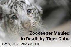 Tiger Cubs Kill Zookeeper
