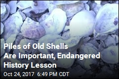 Piles of Old Shells Are Important, Endangered History Lesson