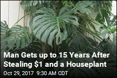 Man Gets up to 15 Years for Stealing $1 and a Houseplant