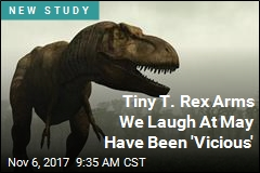 T. Rex May Have Used Petite Arms for 'Vicious Slashing'