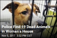 Police Find 19 Dead Animals in Woman's House