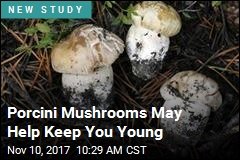 Porcini Mushrooms May Help Keep You Young