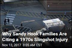 Could a 1977 Suit About a Slingshot Affect a Big Sandy Hook Case?