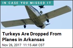 Turkeys in Arkansas Have the Real Nightmare Flights