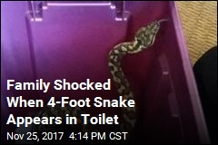 Seattle Family Discovers Python in Apartment Toilet