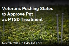 Veterans Pushing States to Approve Pot as PTSD Treatment