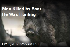 Wild Boar Kills German Hunter