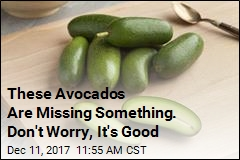 Pitless Avocados Are Here