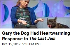Gary the Dog Had Heartwarming Response to The Last Jedi