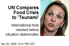 UN Compares Food Crisis to 'Tsunami'