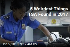 5 Weirdest Things TSA Found in 2017