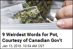 The Canadian Government Has Pot Slang to Teach You