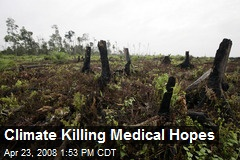 Climate Killing Medical Hopes