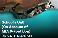School's Out! (On Account of MIA 9-Foot Boa)