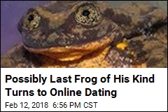 Scientists Create Online Dating Profile for Special Frog