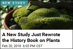 Earth's Plants Are Much Older Than We Thought