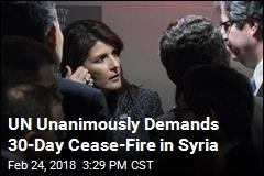 UN Unanimously Demands 30-Day Cease-Fire in Syria
