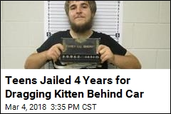 Men Get Jail Time for Dragging Kitten Behind Jeep