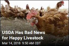USDA Has Bad News for Happy Livestock