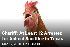Sheriff: At Least 12 Arrested for Animal Sacrifice in Texas
