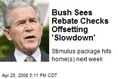 Bush Sees Rebate Checks Offsetting 'Slowdown'