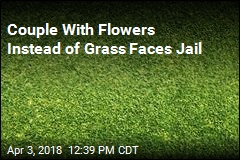 Missouri Couple Face Jail for Planting Flowers, Not Grass, in Yard